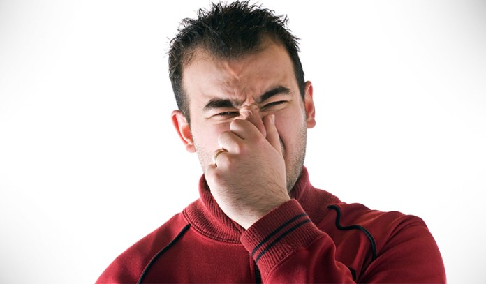 Mold Odor Is A Sign Of Molds In Your House