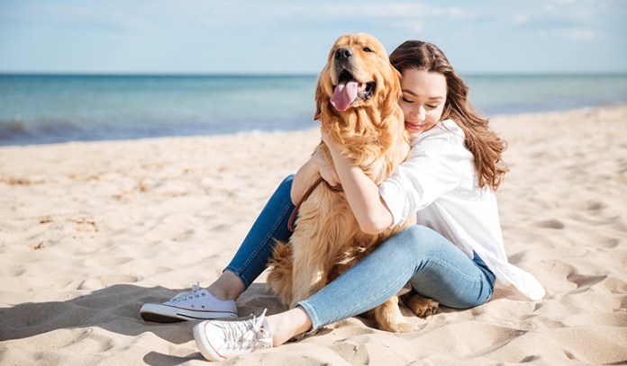 Ways to Relieve Stress and Anxiety Play With Your Pets