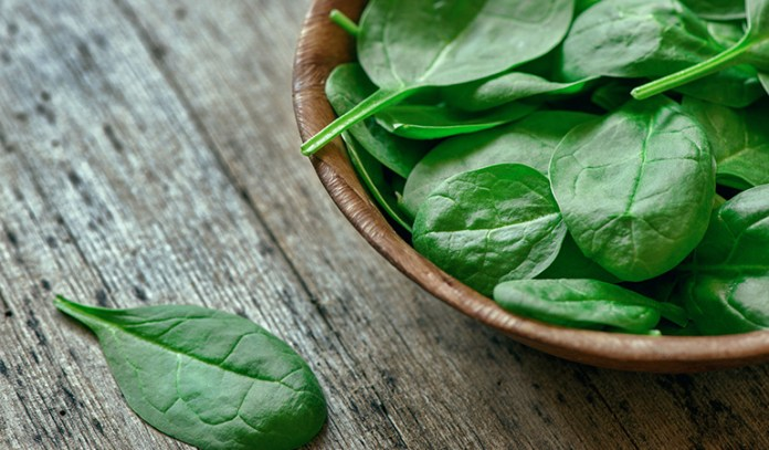 Healthiest Vegetables on Earth Spinach