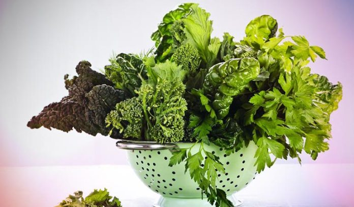 The Healthiest Way To Lose Weight By Eating Salad: Choose Dark Leafy Greens