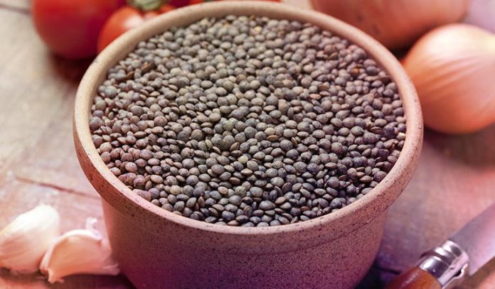 Le Puy Lentils Add Texture And Flavor
