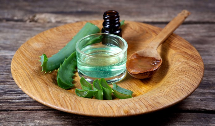 aloe vera for dull, dry or frizzy hair