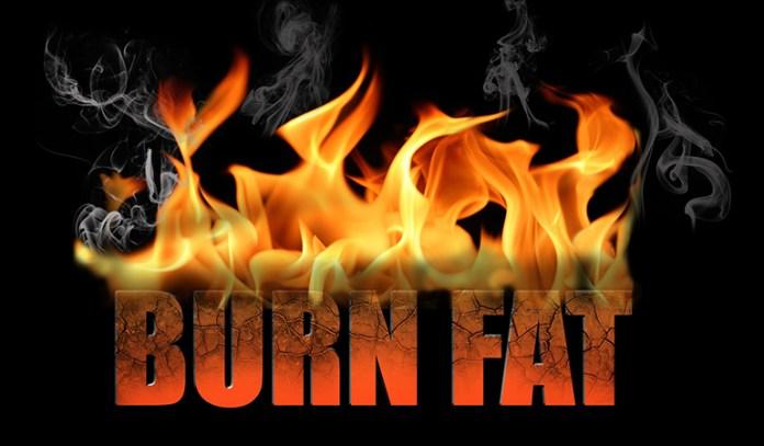 Squats Can Help Burn Fat