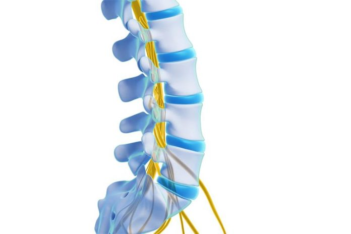 Getting Your Spinal Cord Checked Often Can Prevent Undetected Spinal Cord Damage