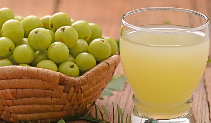 Indian Gooseberry Reduces Fat Concentrations And Promotes Pancreatic Function, Lowering Cholesterol And Blood Sugar Levels