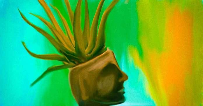 is aloe vera gel good for hair growth