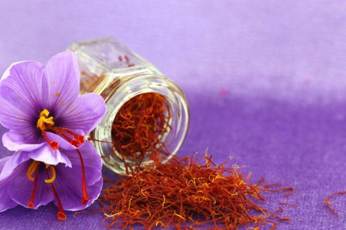 Saffron Can Help You Age Gracefully
