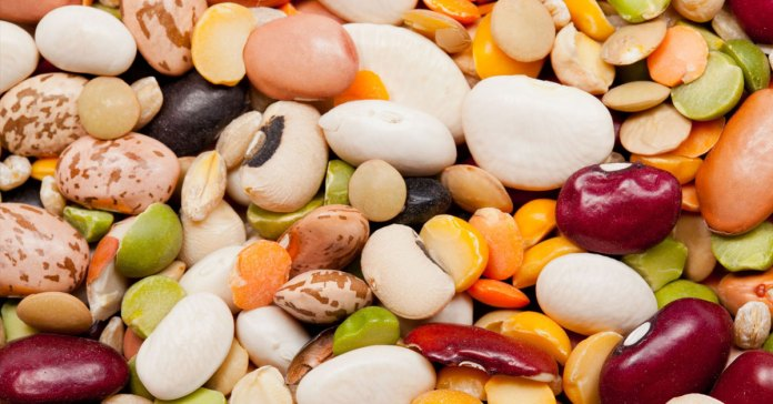 6 Healthiest Beans To Include In Your Diet Today