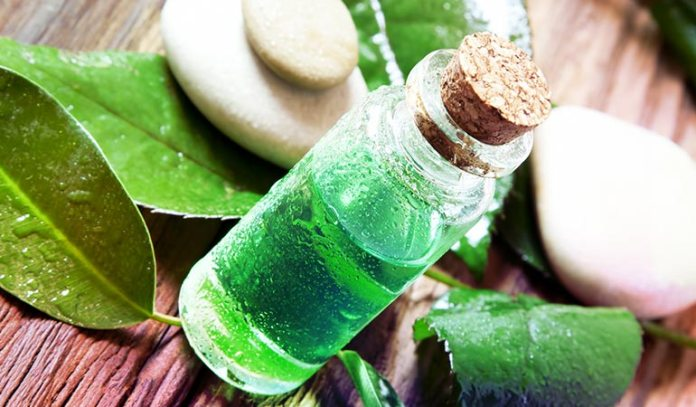Tea tree oil contains strong antiseptic and antifungal properties.