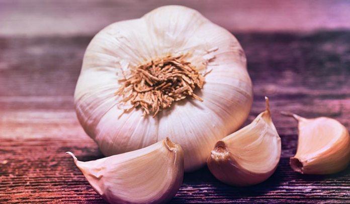garlic has a strong antiviral compounds