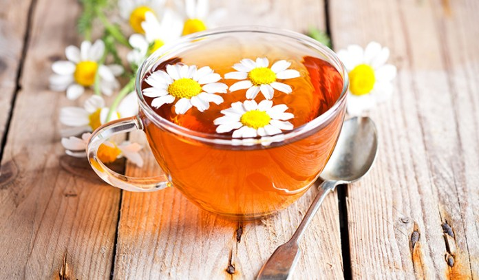 Chamomile Tea Can Help Reduce Coughing