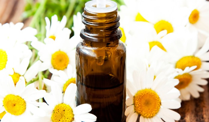 Chamomile is effective in reducing stress and anxiety