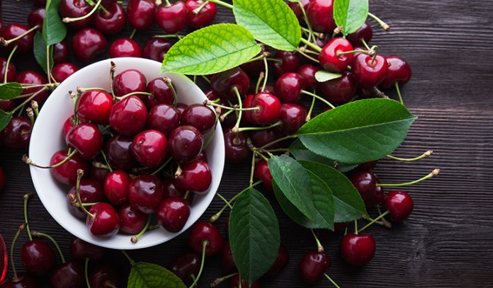 Cherry aids in muscle recovery.