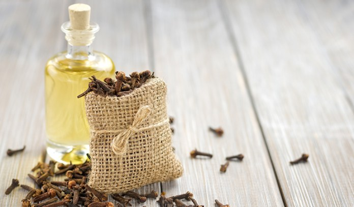 Clove oil is punjent and repels mice and ticks.