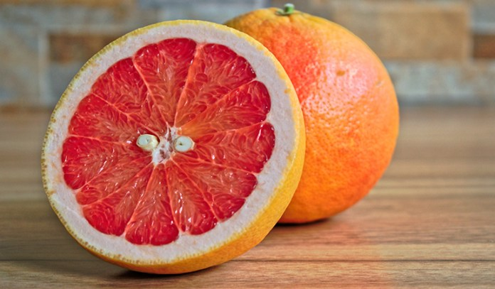 Citrus fruits reduce the chances of a neural tube defect