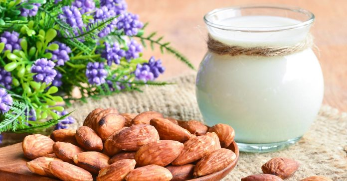 Almond milk can be consumed by vegans and those who are lactose intolerant