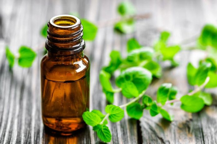 Mint and lemongrass oil can kill termites