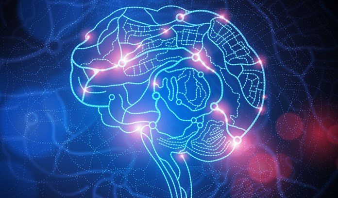 Ganoderma helps create new neurons or nerve cells in the brain