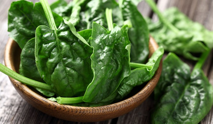 Spinach is rich in protein and fiber