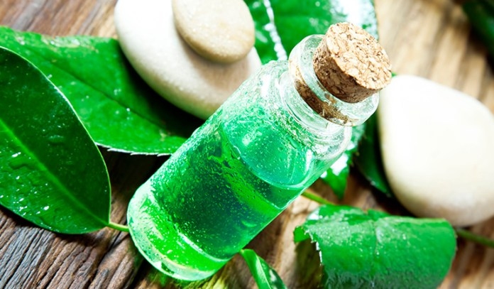 Tea Tree Oil Is A Great Natural Remedy For Mold Thanks To Its Antifungal Properties