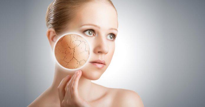 (Oatmeal is helpful in moisturizing dry skin effectively.)