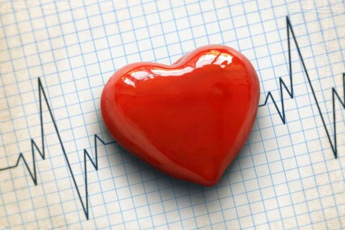 heart disease and palpitations
