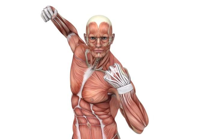Hindu push-ups focuses on all major muscle groups