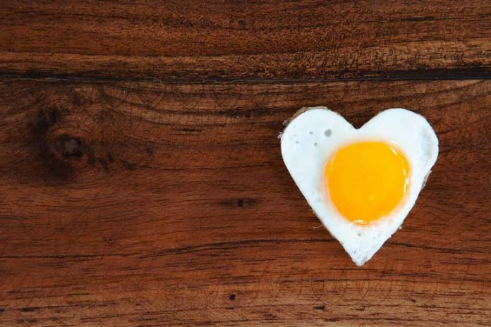 Most healthy fat in the egg is concentrated in the yolk