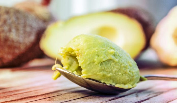 Mashed Avocados Help You Burn Fat