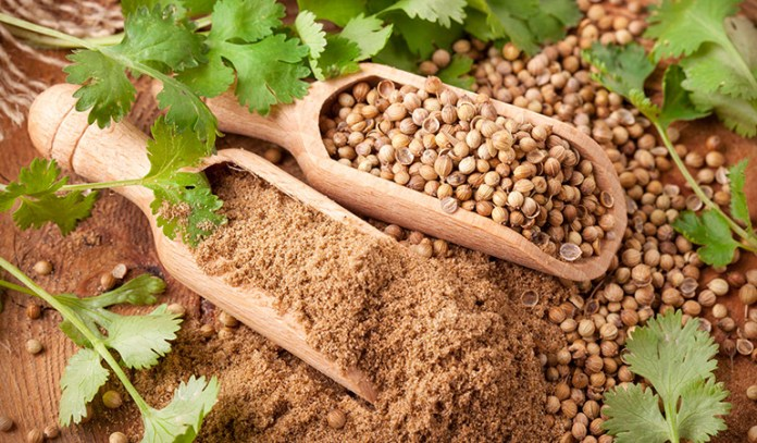 Coriander seeds help stimulate comfortable digestion and help alleviate the symptoms of an upset stomach.