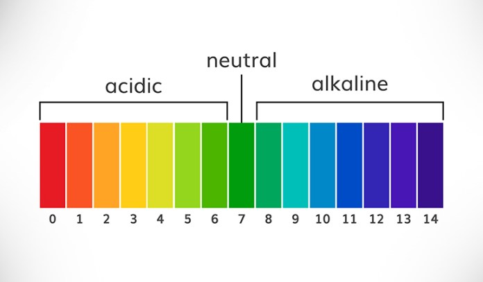Maintaining a healthy alkaline/acidity balance is central to our health and well-being.