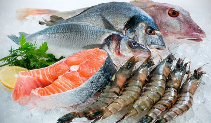 Not all fish are contaminated by high amounts of mercury.