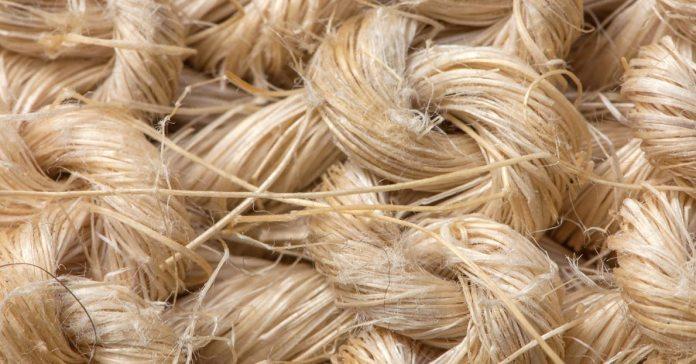 Do away with regular cotton bras and opt for the organic hemp bra.)