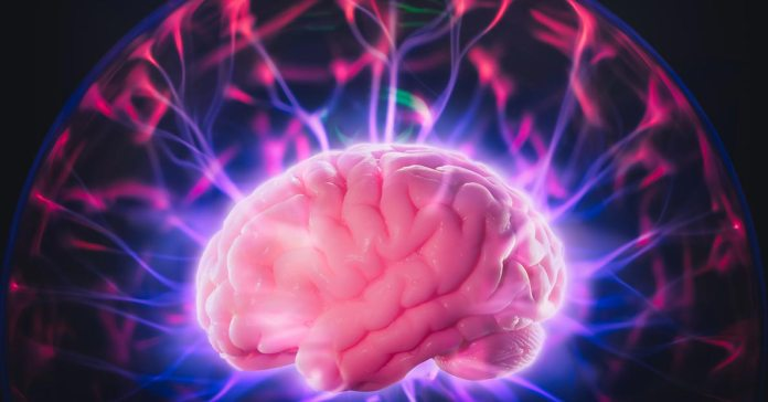Though the plasticity of your brain declines with age, it happens throughout your life