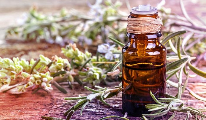 Rosemary Soothes Nerves And Relieves Stress