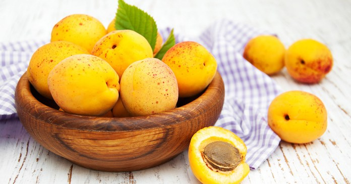 Apricot seeds are very beneficial