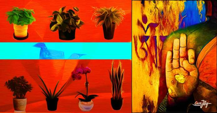 Plants help harmonize and balance the atmosphere in feng shui