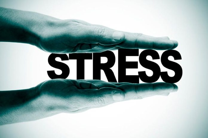 Increased Stress Levels Can Affect Your Gut Health