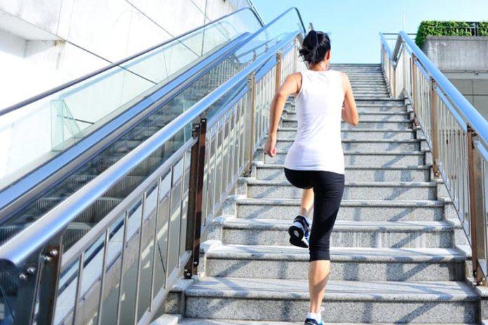 collagen prevents arthritis and joint stiffness