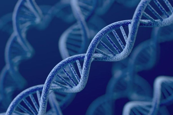 Genes are altered with the radiofrequency exposure