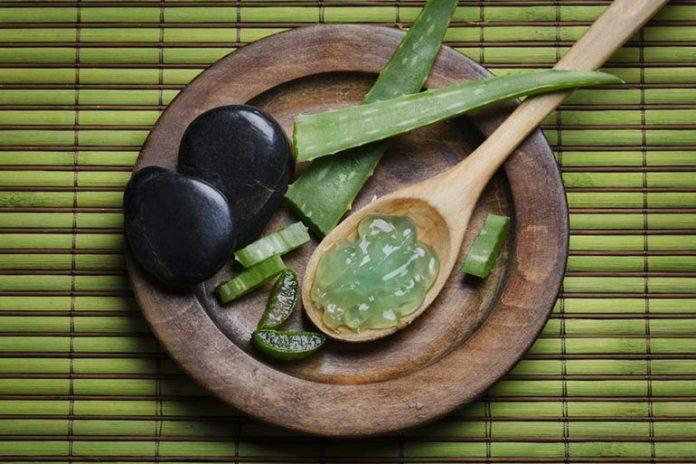 Aloe Vera Gel Can Lighten Dark Inner Thighs