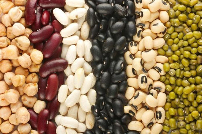 Vegan protein sources include beans, legumes, and lentils.