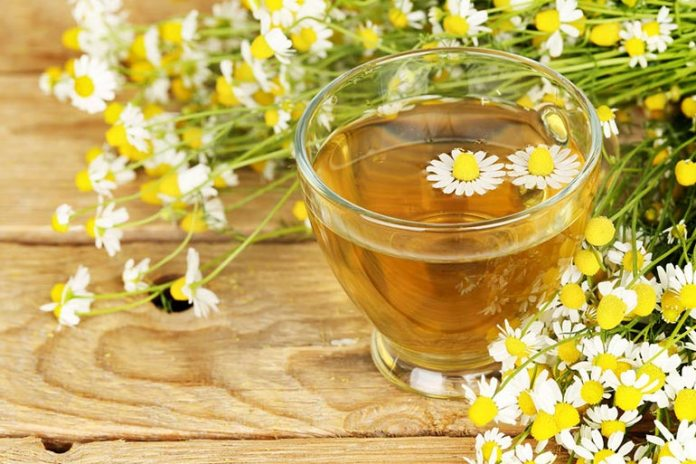 Chamomile tea is known to prevent the sensation of nausea