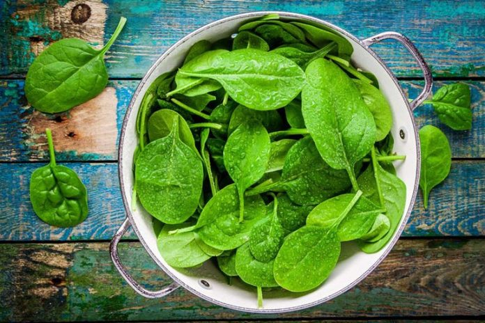 Spinach keeps the heart healthy and reduces high blood pressure.