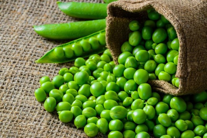 Green peas are high in carbs and can lead to weight gain