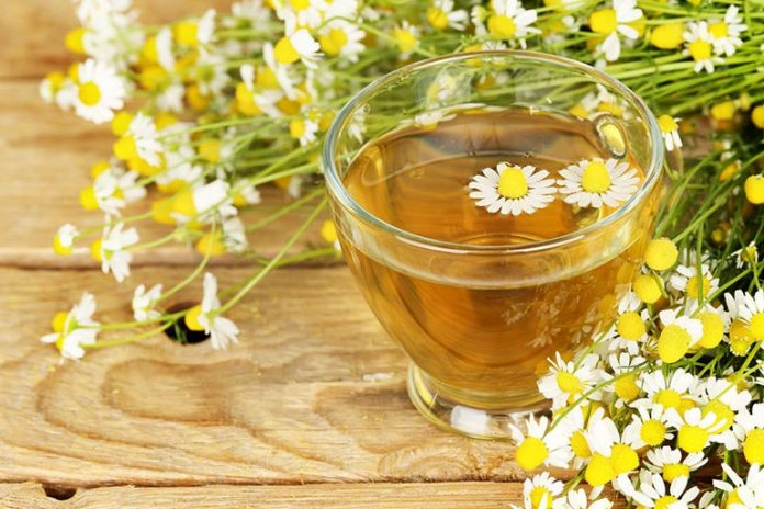 Chamomile Tea Is Effective In Treating Diarrhea