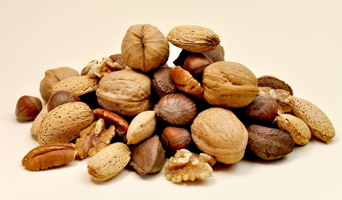Nuts contain minerals and essential vitamins