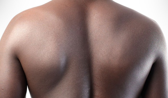 Scapula isolation works only the tiny muscles in the middle of your back.