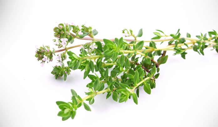 One teaspoon of thyme offers 1 milligram of magnesium.