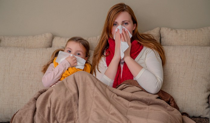 Maternal allergies can be passed on from one generation to the next
